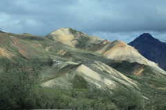 Denali National Park Royalty Free Stock Photography
