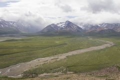 Denali National Park Mountains and River Stock Photography