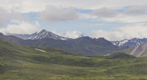 Denali National Park Mountains Stock Images