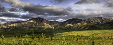Denali National Park Panorama Stock Images