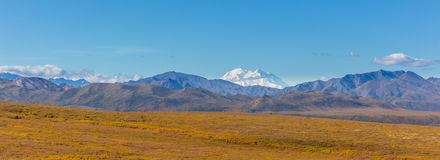 Denali National Park Panorama Royalty Free Stock Image