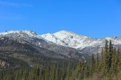 Denali National Park and Preserve Stock Photography
