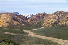 Denali national park scenic view Stock Photos
