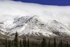 Denali nationalpark Royaltyfri Fotografi
