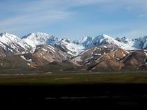 Denali nationalpark - Alaska Arkivfoton