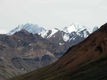 Denali nationalpark - Alaska Royaltyfri Bild