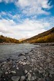 Denali Nationalpark-Fluss in Alaska stockfotografie