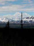 Denali - Nordamerika mest högväxta maximum Arkivfoton