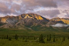 Denali. Park landscapes Stock Photo