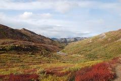 Denali Park Narodowy Spadek Fotografia Stock