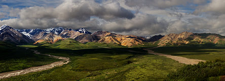 Denali Park Panorama Stock Photos