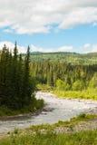 Denali parka narodowego krajobraz Fotografia Stock