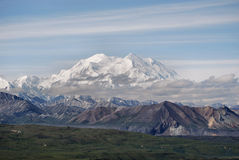 Denali Peak. Denali National Park alaska in summer during clear skies Stock Photos