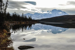 Denali reflections Royalty Free Stock Photography