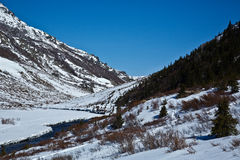 Denali's Savage River Royalty Free Stock Photo