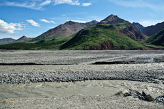 Denali's Toklat River Stock Photography
