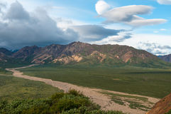 Denali trail. A curved walking trail in Denali national park, Alaska USA Stock Photography