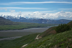 Denali Royalty Free Stock Image