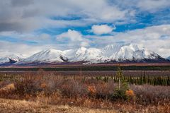 Denaliaandrijving, het Nationale Park van Denali, Alaska, de V.S. stock foto's