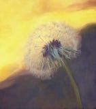 Dendelium-Sonnenuntergang lizenzfreie abbildung