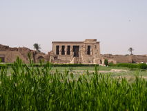 Dendera Temple Royalty Free Stock Image
