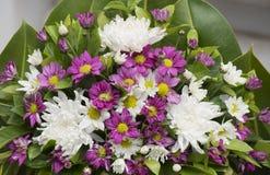 Dendranthemum-Blumenblumenstrauß lizenzfreies stockfoto