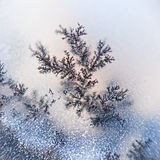 Dendrite crystals macro Stock Photography