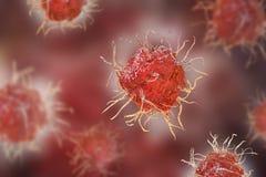 Dendritic cell, antigen-presenting immune cell. 3D illustration Stock Image