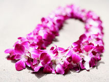 Dendrobium Orchid Leis. Very high resolution image of leis on concrete ground Stock Photo