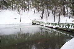 Dengerous桥梁 免版税图库摄影