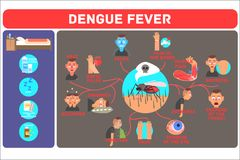 Dengue fever concept. Mosquito-borne tropical disease. Infographic showing different symptoms and methods of prevention. Dengue fever concept. Mosquito-borne Royalty Free Stock Photo
