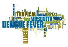 Dengue fever. Tropical virus disease. Travel health word cloud Royalty Free Stock Photography