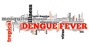 Dengue fever. Tropical virus disease. Travel health word cloud Royalty Free Stock Image