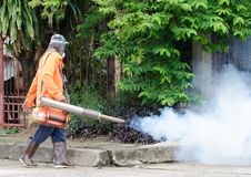 Dengue-Fieber Steuerung Stockfotografie