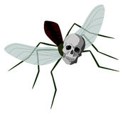 Dengue mosquito. Illustration of a mosquito with its' head replaced by a human skull vector illustration