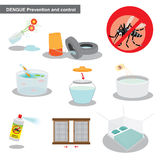 Dengue preventions and control. How to prevent and control numbers of mosquitos Stock Image