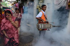 Dengue Protection Stock Images