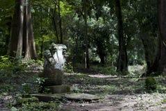 denhövdade nagastatyn i en Angkorian fördärvar område Royaltyfri Bild