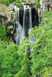 Denham Falls in Queensland Stock Images