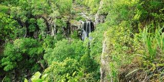 Denham Spada w Queensland Zdjęcie Royalty Free