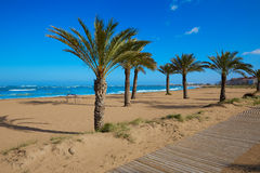 Denia beach Las Marinas with palm trees Alicante Royalty Free Stock Photo