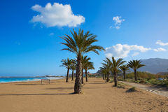 Denia beach Las Marinas with palm trees Alicante Royalty Free Stock Photography