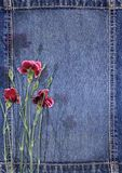 Denim background with flower Stock Images