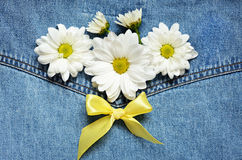 Denim and daisies Royalty Free Stock Images