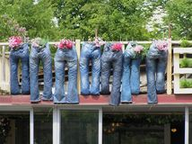 Denim flowerpots. Flower pots in blue jeans on balcony in Vilnius, Lithuania Royalty Free Stock Photos