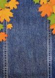 Denimscrapbookbakgrund med höstleaves Royaltyfri Fotografi