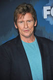 Denis Leary Royalty Free Stock Photos