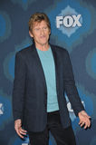 Denis Leary Royalty Free Stock Image