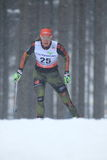 Denise Herrmann - cross country skiing Royalty Free Stock Photography