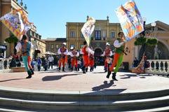 Denitalienare Palio flaggan fladdrar royaltyfria bilder